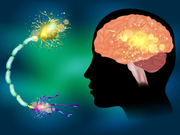 Эпилепсия. Понятие. Профилактика. Безопасность